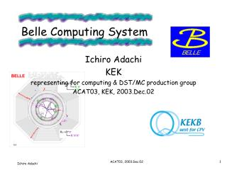 Belle Computing System