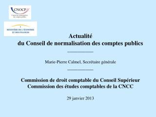 L'activité du Conseil Le futur recueil des normes comptables des établissements publics