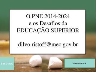 O PNE 2014-2024  e os Desafios da  EDUCAÇÃO SUPERIOR dilvo.ristoff@mec.br