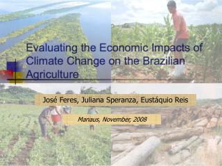 Evaluating the Economic Impacts of Climate Change on the Brazilian Agriculture