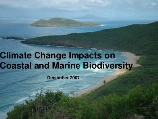 Climate Change Impacts on  Coastal and Marine Biodiversity December 2007