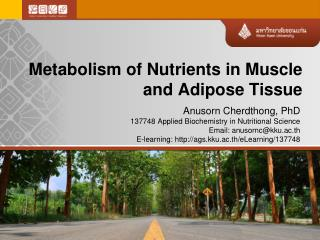 Metabolism of Nutrients in Muscle and Adipose Tissue