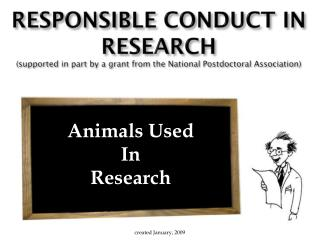 Animals Used In Research