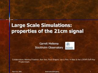 Large Scale Simulations: properties of the 21cm signal