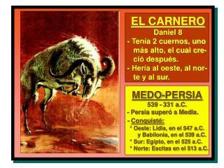 EL CARNERO Daniel 8 - Tenía 2 cuernos, uno    más alto, el cual cre-    ció después.