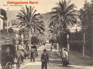 Delegazione Nervi