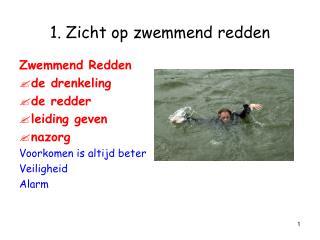 1. Zicht op zwemmend redden
