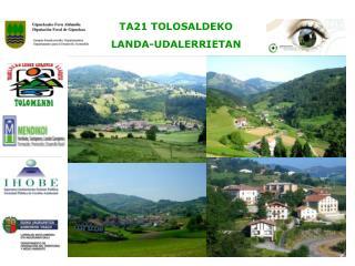 KONTESTUA  / CONTEXTO TOLOSALDEA: 28 herri  / 28 municipios Tolosako TA21