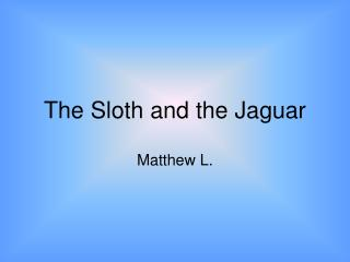 The Sloth and the Jaguar