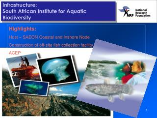 Infrastructure: South African Institute for Aquatic Biodiversity