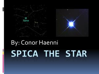 Spica The Star