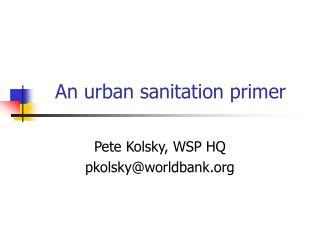 An urban sanitation primer