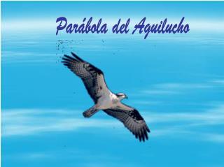 Parábola del Aguilucho
