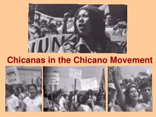 Chicanas in the Chicano Movement