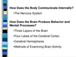 How Does the Body Communicate InternallyThe Nervous System