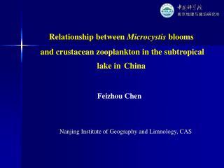 Relationship between  Microcystis  blooms