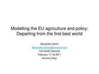Modelling the EU agriculture and policy:  Departing from the first best world