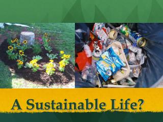 A Sustainable Life?
