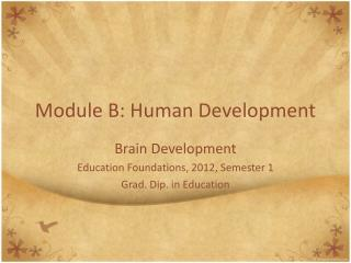 Module B:  Human Development