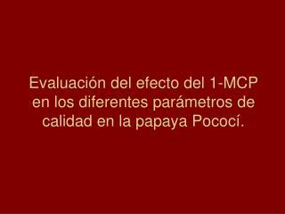 Evaluaci n del efecto del 1-MCP en los diferentes par metros de calidad en la papaya Pococ .