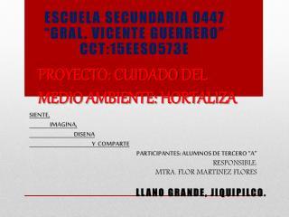 PROYECTO: CUIDADO DEL MEDIO AMBIENTE: HORTALIZA