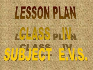 LESSON PLAN CLASS    IV SUBJECT  E.V.S.