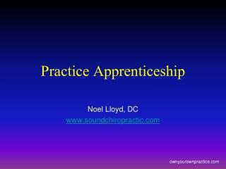 Practice Apprenticeship