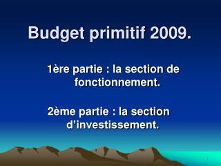 Budget primitif 2009.