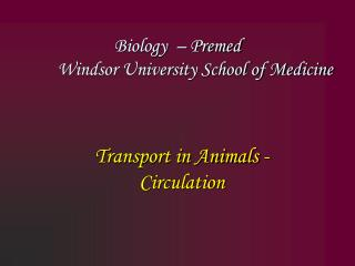 Biology  – Premed  	Windsor University School of Medicine