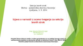 mag. Katarina Železnik Logar IVD Maribor p.o. p.e. Ljubljana