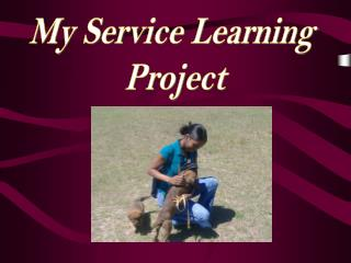 My Service Learning  Project
