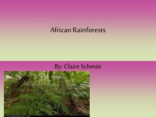 African Rainforests