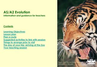 AS/A2 Evolution  Information and guidance for teachers Contents Learning Objectives Lesson plan