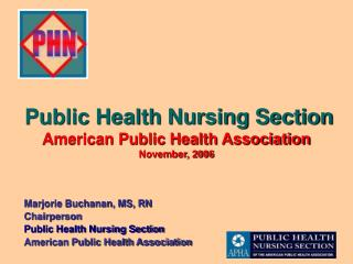 Public Health Nursing Section American Public Health Association November, 2006