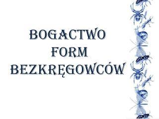 BOGACTWO  FORM BEZKRĘGOWCÓW