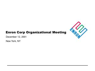 Enron Corp Organizational Meeting