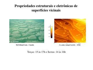 Propriedades estruturais e eletrônicas de superfícies vicinais