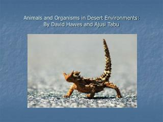 Animals and Organisms in Desert Environments: By David Hawes and Ajusi Tabu