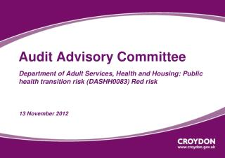 Audit Advisory Committee