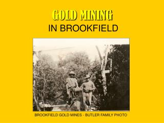 GOLD MINING  IN BROOKFIELD