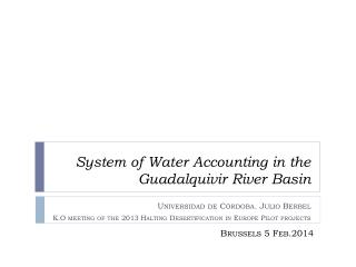 System of Water Accounting in the Guadalquivir River  Basin