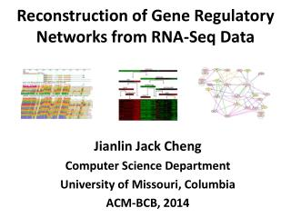 Reconstruction of Gene Regulatory Networks from RNA-Seq Data
