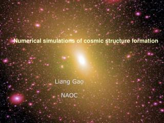 Numerical simulations of cosmic structure formation