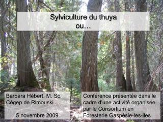 Sylviculture du thuya ou�