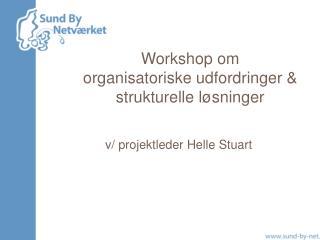 Workshop om  organisatoriske udfordringer & strukturelle løsninger