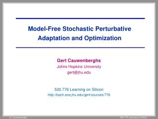 Model-Free Stochastic Perturbative Adaptation and Optimization