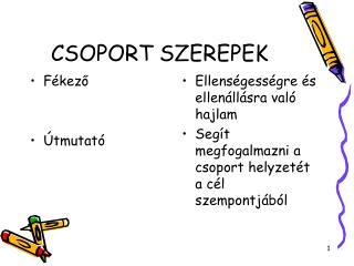 CSOPORT SZEREPEK