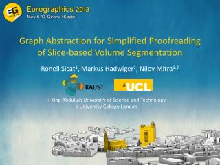 Graph Abstraction for Simplified Proofreading of Slice-based Volume Segmentation