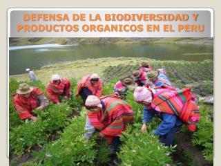DEFENSA DE LA BIODIVERSIDAD Y PRODUCTOS ORGANICOS EN EL PERU
