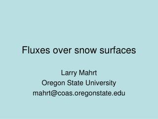Fluxes over snow surfaces